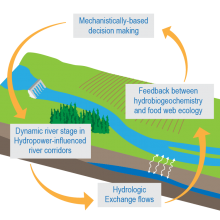An Integrated View of Hydropower Impacts | Biological
